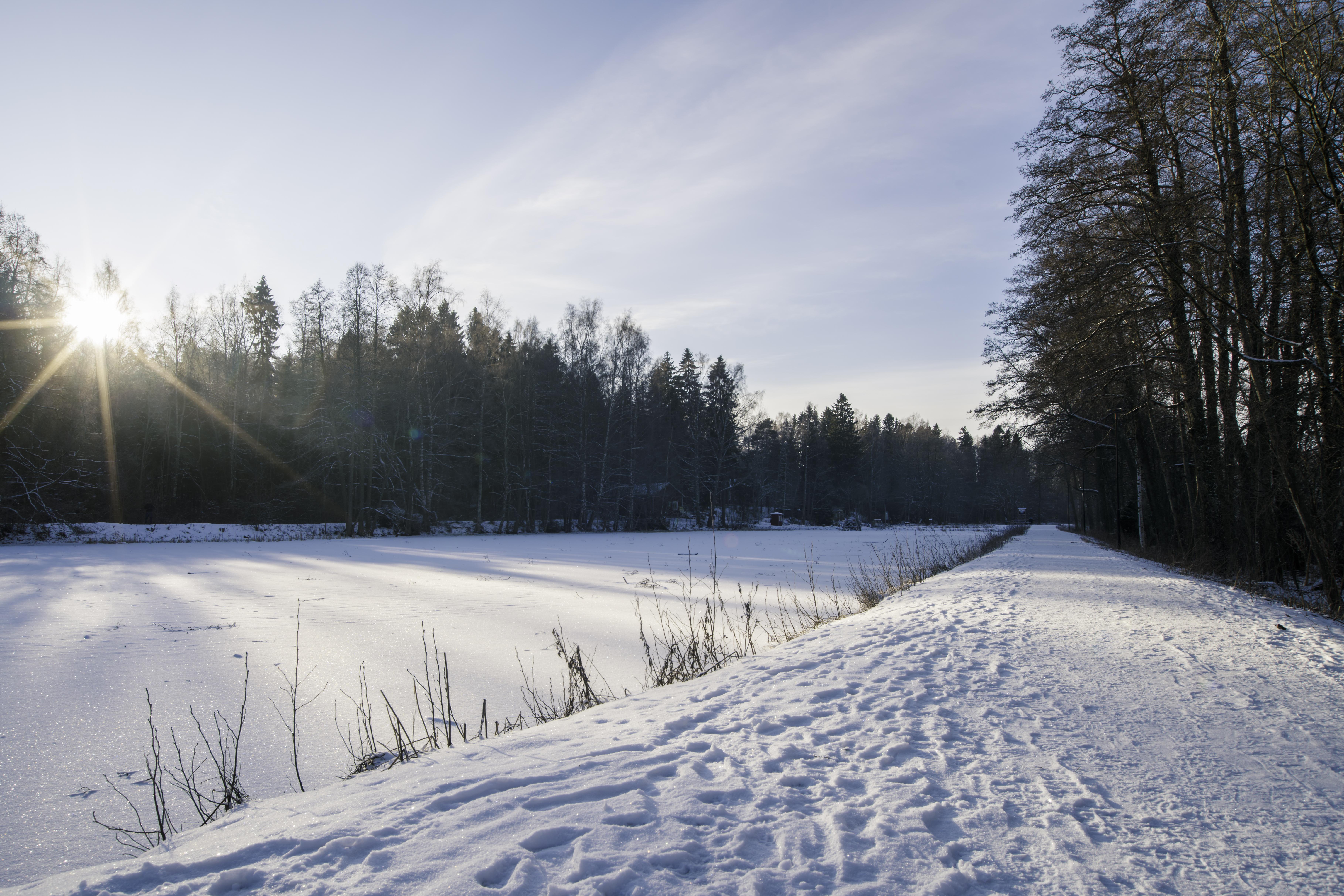 Porlan talvimaisema © Jani Salmela